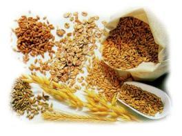 cereali-integrali